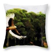 Flight Of The Jabiru V2 Throw Pillow