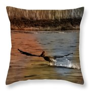 Flight Of The Pelican-featured In Wildlife-newbies And Comfortable Art Groups Throw Pillow