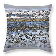 Flight Of The Pipers Throw Pillow