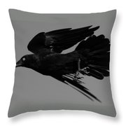 Flight Of The Raven Throw Pillow