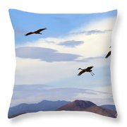 Flight Of The Sandhill Cranes Throw Pillow by Mike  Dawson