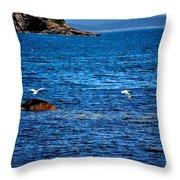 Flight Of The Seagulls Throw Pillow
