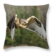 Flight Of The Well-fed Throw Pillow