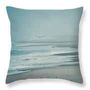 Flight Of Tranquility And Peace Throw Pillow