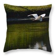 Flight Over Pond Throw Pillow
