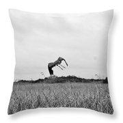 Flight Over The River Of Grass Throw Pillow