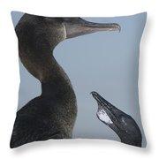 Flightless Cormorant And Chick Galapagos Throw Pillow