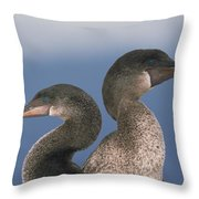Flightless Cormorant Pair Galapagos Throw Pillow