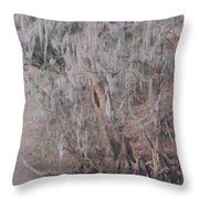 Flint River 2 Throw Pillow