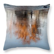 Flint River 22 Throw Pillow