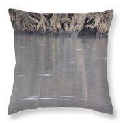 Flint River 6 Throw Pillow