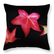 Flirting With You Throw Pillow