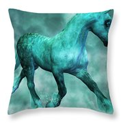 Float Throw Pillow