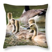 Floating Along The Pond Throw Pillow