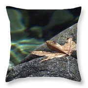 Floating.  Tahquitz Canyon. Palm Springs California.  Throw Pillow
