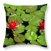 Floating Red Water Lilly Flowers On Pond Throw Pillow