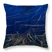 Floating Weeds In Picture Lake Throw Pillow