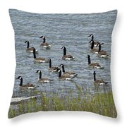 Flock Of Canada Geese   #7116 Throw Pillow