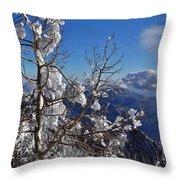 Flocked Pinon Throw Pillow
