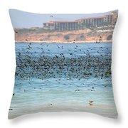 Flocking At Terranea Throw Pillow