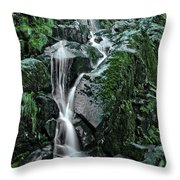Flood Falls Throw Pillow
