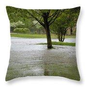 Flooded Park Throw Pillow
