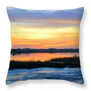 Flooded River Throw Pillow