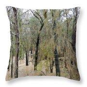 Flooding Dry Creek Throw Pillow