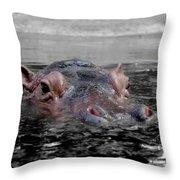 Flooding Throw Pillow