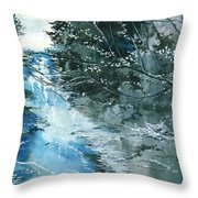 Floods 3 Throw Pillow by Anil Nene