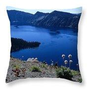 Flora Of Crater Lake Throw Pillow