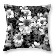Floral Drama Throw Pillow