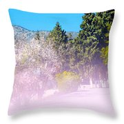 Floral Entrance Throw Pillow