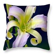 Floral Fanfare Throw Pillow