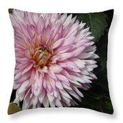 Floral Firework Throw Pillow