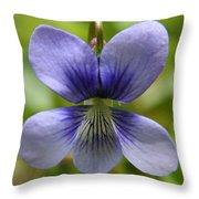 Floral Flight  Throw Pillow