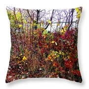 Floral Garden Feast Throw Pillow