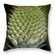 Floral Grenade Throw Pillow