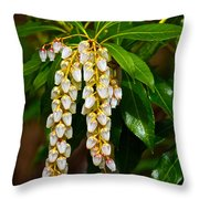 Floral Hanging Lanterns From Japan Throw Pillow
