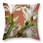 Floral Highlights Throw Pillow