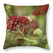 Floral Prose Throw Pillow