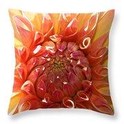 Floral Sun Throw Pillow