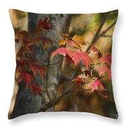 Florida Autumn Leaves Throw Pillow