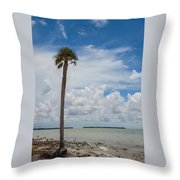 Florida Bay 6943 Throw Pillow