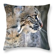 Florida Bobcat Throw Pillow