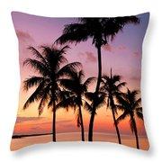 Florida Breeze Throw Pillow by Chad Dutson