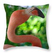 Florida Classic Throw Pillow