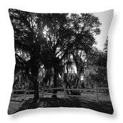 Florida Country Shade Throw Pillow