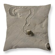 Florida Crown Conch Photo Throw Pillow