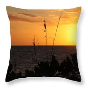 Florida Delight Throw Pillow